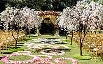 Flower petals scattered down an aisle leading to an altar in an outdoor courtyard