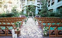 Brisa Courtyard
