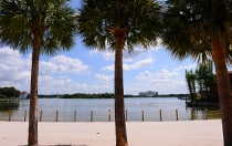 Palm trees, a sandy beach and a post and rope fence run along the edge of the Seven Seas Lagoon at Disney's Polynesian Village Resort