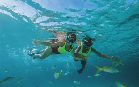 A man and a woman snorkel in the Caribbean surrounded by tropical fish