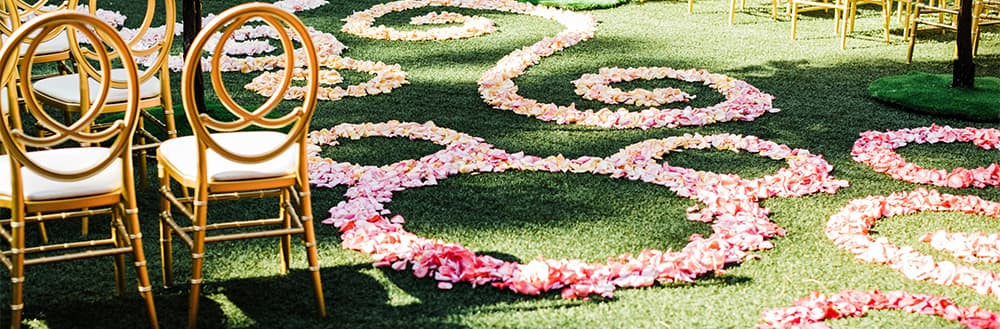 Rose petals are scattered in spirals and Mickey Mouse shapes on a lawn