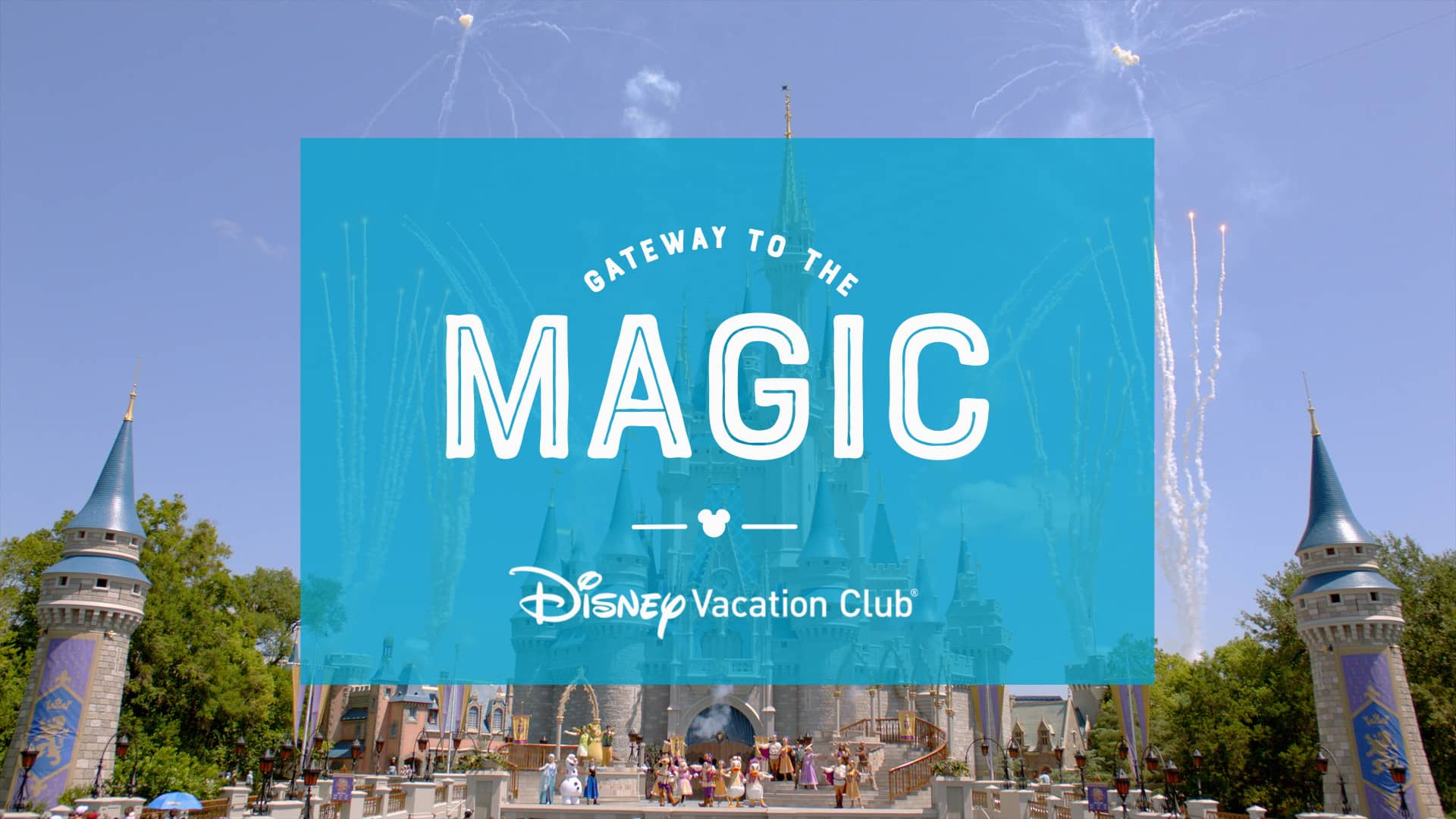 View Free Disney Vacation DVD